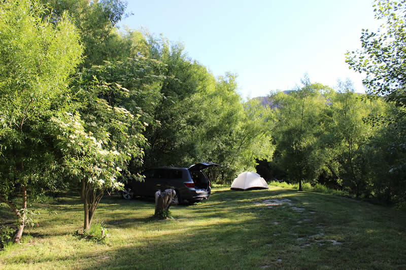 Camp Sites At Waves Campsite Havelock